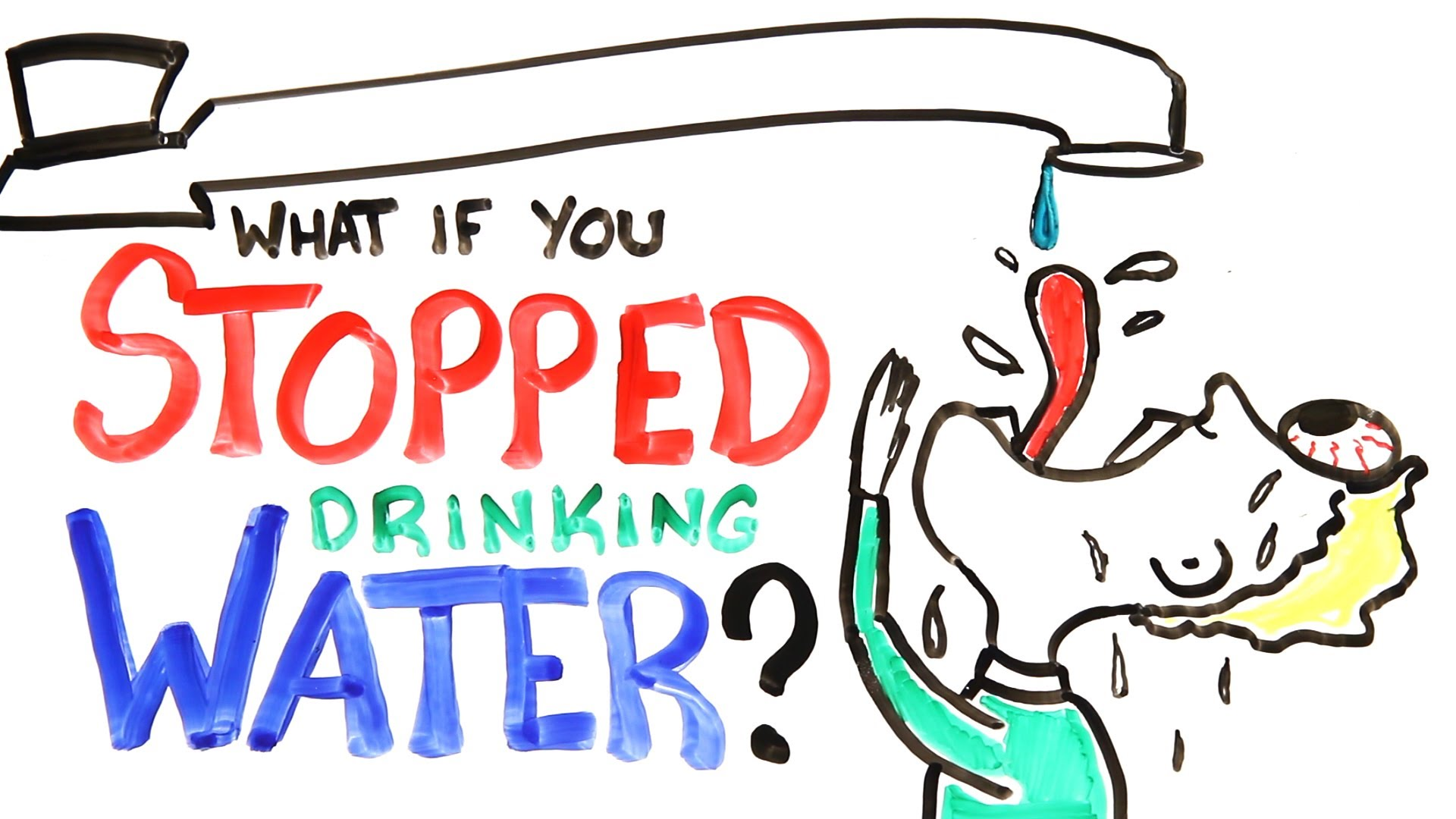 What Would Happen If You Stopped Drinking Water?